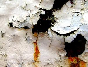 Docent Creatief Schrijven worden? Inschrijven 2015 en Voortraject